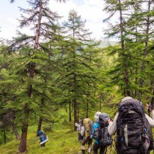 Expeditionen / Touren